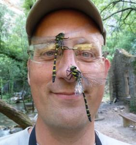 Magnus och två arter kungstrollsländor Foto Robin Pranter